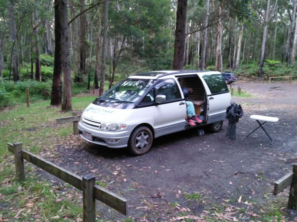 Schlafplatz im Eukalyptuswald